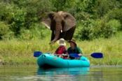 Upper Zambezi River canoeing in a package