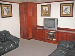 The TV lounge in Catalina Houseboat - Kariba