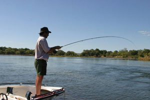Fishing on the upper Zambezi River near Victoria Falls