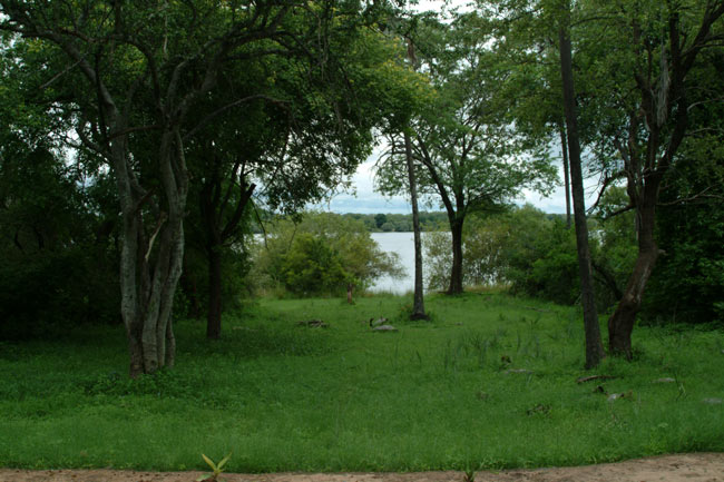 Close to the Zambezi River banks