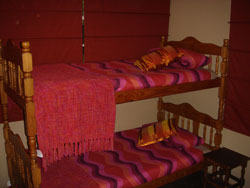 savanna bunks