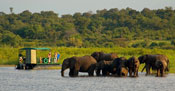 Guests go across the border for a Chobe Day Trip
