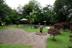Savanna Lodge Garden