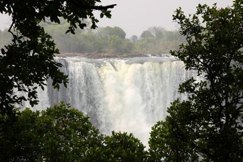 Victoria Falls through rainforest