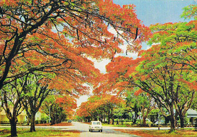 City of Harare
