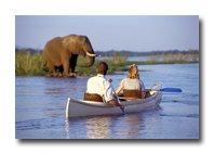 Canoe and Elephant on the Zambezi River