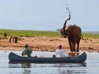 Canoeing on Lake Kariba wih Musango Safari Camp