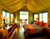 Luxury accommodation at Bomani Tented Lodge in Hwange National Park, Zimbabwe