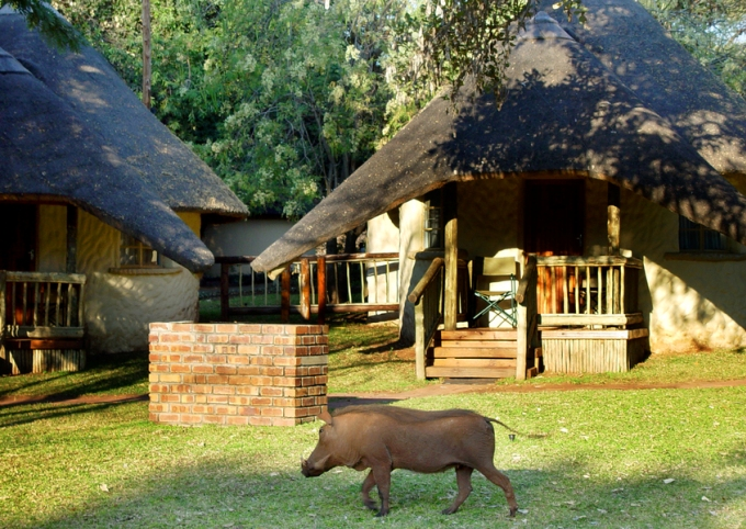 Chobe Safari Lodge rondavels near Chobe National Park, Botswana.
