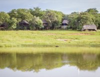 The treehouses at Ivory Lodge, Hwange National Park, Zimbabwe