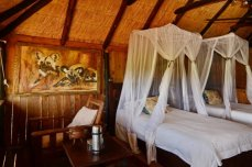 Inside a treehouse at Ivory lodge - Hwange National Park, Zimbabwe