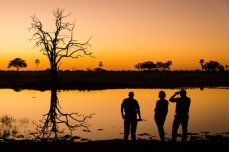 Guided walking safari in Hwange National Park, Zimbabwe