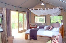 The interior of one of the elevated tented suites at Miombo Safari Camp - Hwange, Zimbabwe