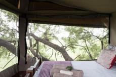 Dove's Nest treehouse with panoramic views of Hwange bush -The Hide, Hwange National Park, Zimbabwe