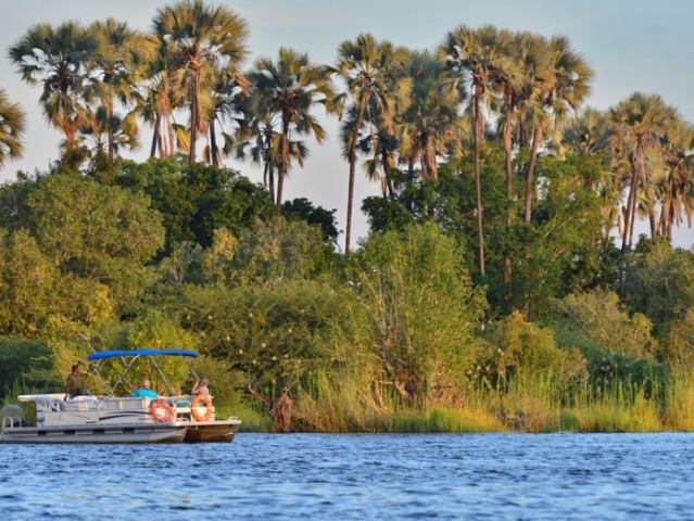 River Cruise on the Zambezi River near Victoria Falls, Zimbabwe