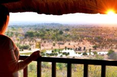 View from a waterhole-facing suite at Victoria Falls Safari Lodge - Victoria Falls, Zimbabwe