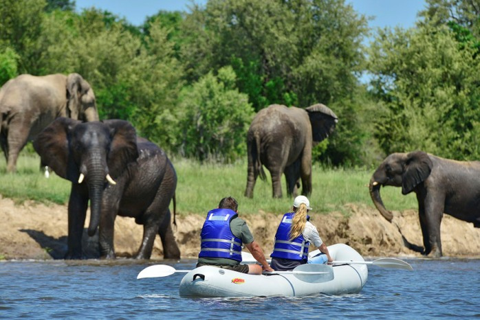 Canoeing on the Zambezi River near Victoria Falls, Zimbabwe