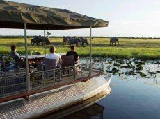 Folks on a Chobe River cruise in Chobe National Park, Botswana