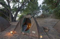 Camping in the Chobe bush