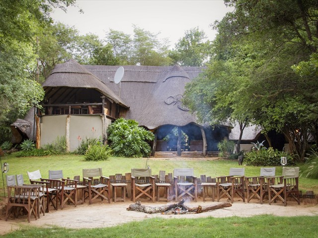 Large elephant herd in front of Ivory Lodge - accommodation in Hwange