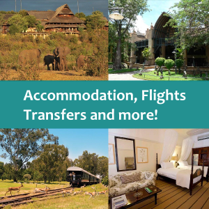 Victoria Falls flights, transfers and accommodation in discounted packages, plus lots more!