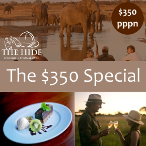 Special price for a stay at The Hide in Hwange National Park, Zimbabwe