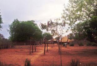 Cultural village tour at Mukuni Village near Livingstone town and the Victoria Falls, Zambia