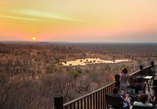 Guest enjoying the waterhole at Victoria Falls Safari Lodge