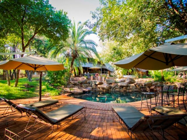 Pool area at Lokuthula Lodges, great for families. Get a packaged deal - including flights and accommodaion