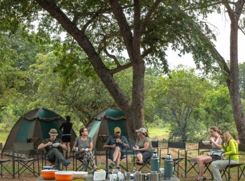 Budget Camping Safari - Chobe, Botswana