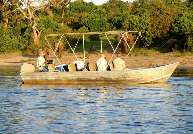 River boat cruise on the Chobe River