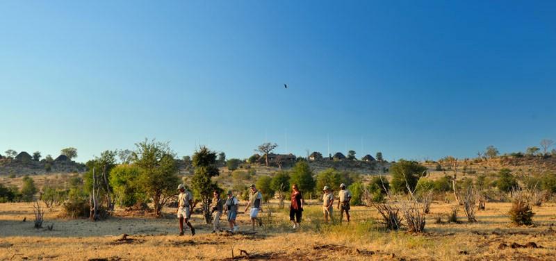 A guided bush walk at Ngoma Safari Lodge - Chobe, Botswana
