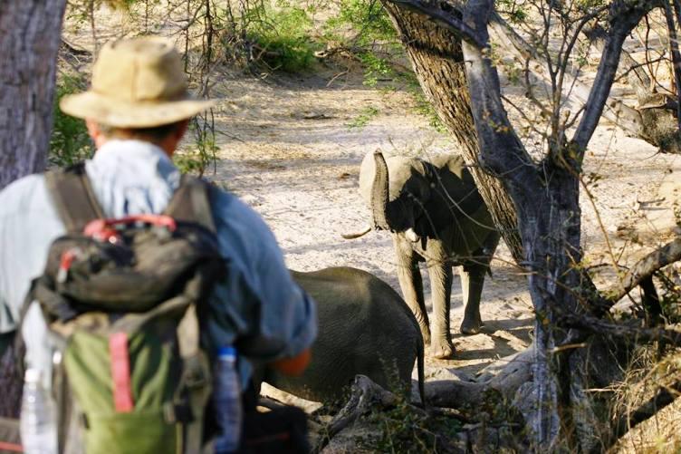 Leon Varley in the African bush on a walking safari