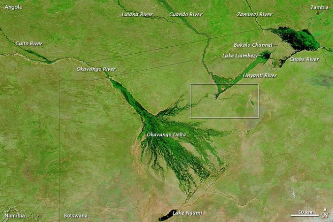 The Okavango Delta as seen from above