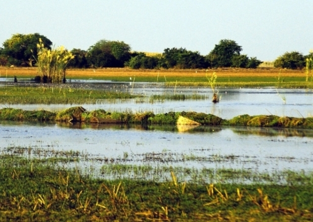 Lake Bengweulu swamps/wetlands in Zambia