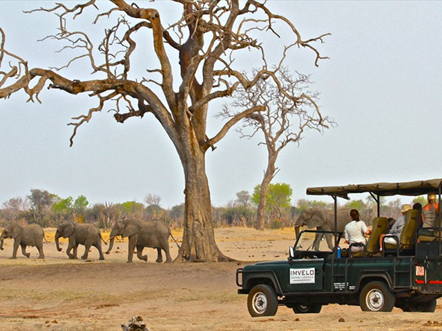 Bomani Lodge game drive in Hwange, Zimbabwe