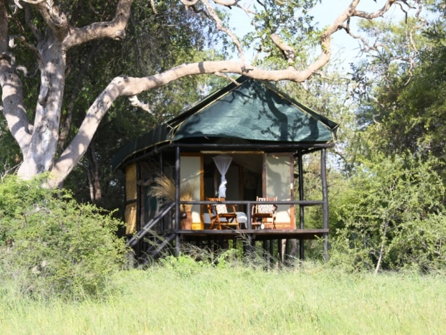 Outside a Hornbill tent at Bomani Tented Lodge in Hwange National Park, Zimbabwe