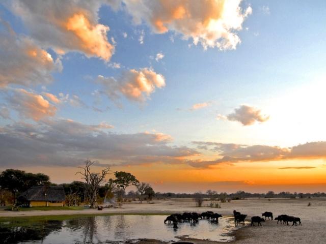 The pan at Bomani Tented Lodge in Hwange National Park, Zimbabwe