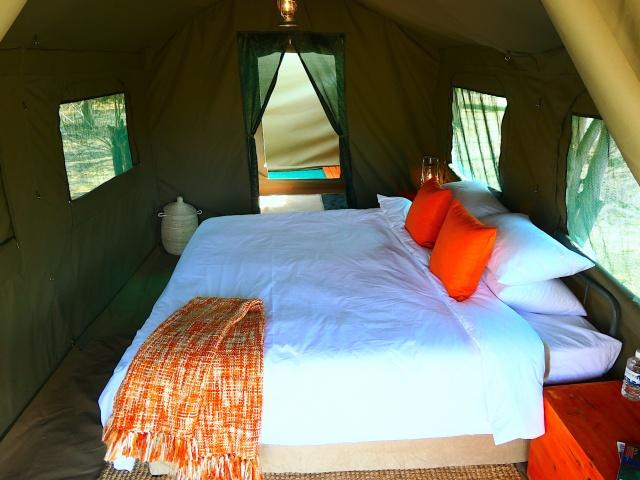 Luxury camping safari accommodation