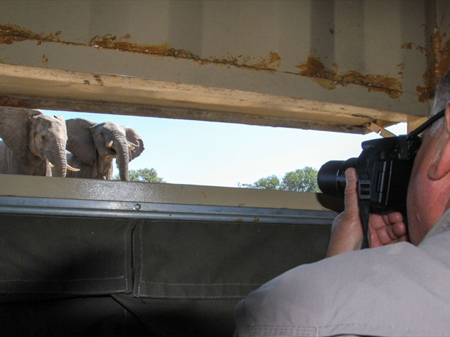 Get up close in the safety of the hide