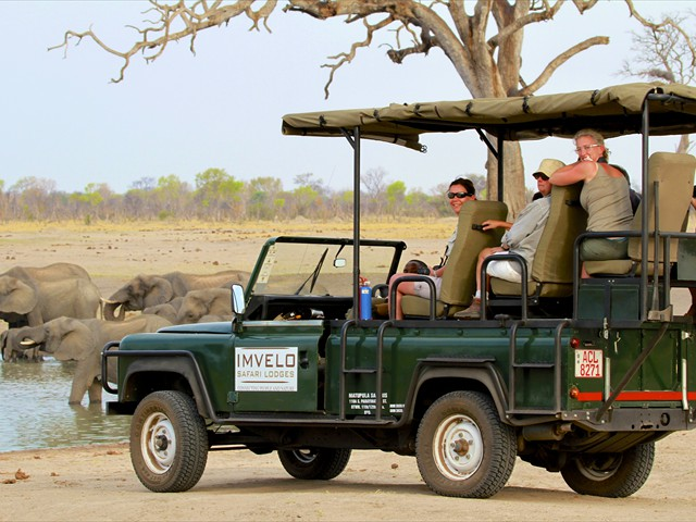 Game drive activity at Camelthorn Lodge