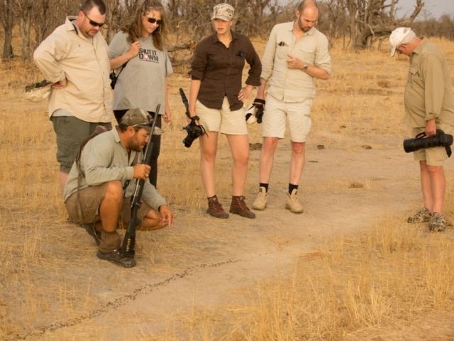 Davisons Camp, Hwange National Park, Zimbabwe