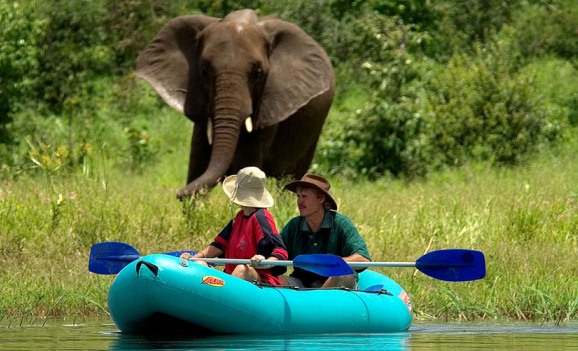 Overnight canoe safari trips down the Zambezi River in the Zambezi National Park near Victoria Falls, Zimbabwe