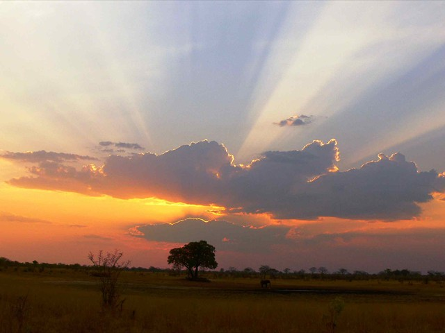 Magnificent sunset at Camp Hwange