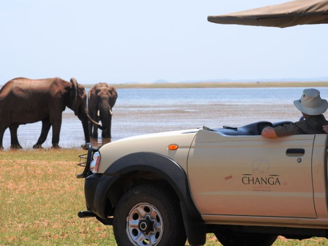 Game drive in Matusadona National Park