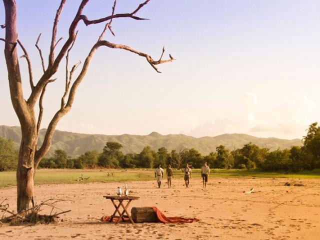 Walking with Changa Safari Camp in Matusadona National Park - Lake Kariba