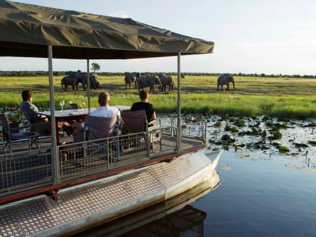 Folks on a Chobe River cruise in Chobe National Park, Botswana