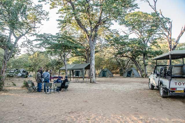 Modest camp