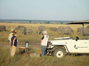 Drinks on a game drive in Chobe National Park - Botswana