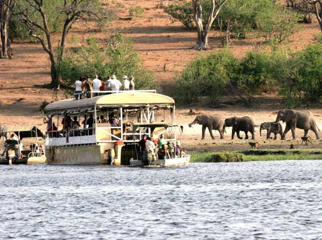 Chobe Safari Lodge package for 2 nights plus flights into Botswana